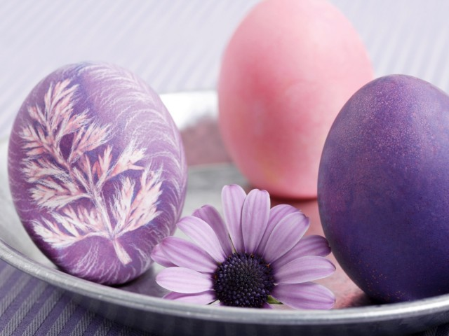 easter-plate-egg-flower-holidays-480x640[1]