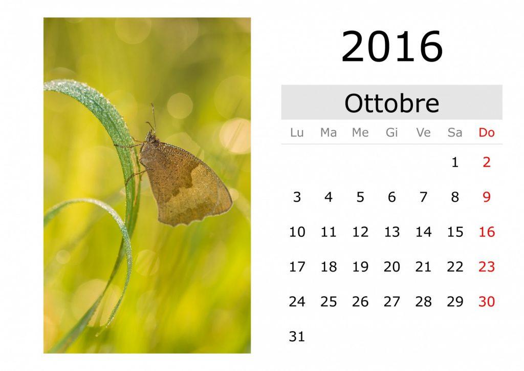 итальянский календарь октябрь 2016