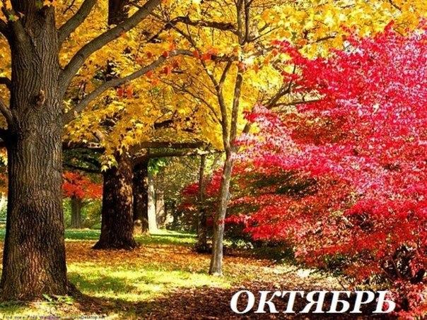 октябрь природа
